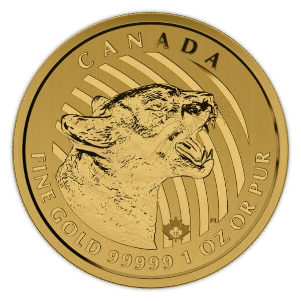 Gold Canadian Growling Cougar Coin Obverse