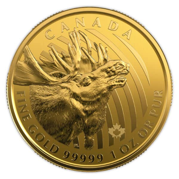 Gold Canadian Moose Coin Reverse